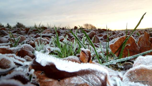 ...regiert im Schatten noch der Frost