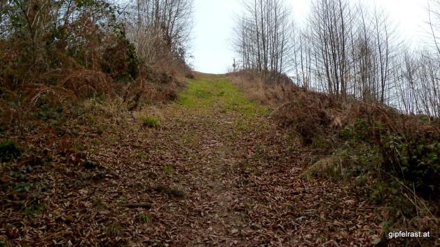 Von wegen sanftes Hügelland! Wenn's hier mal bergauf geht, dann kommt der Weg ordentlich zur Sache.