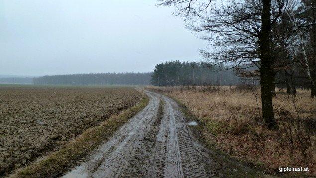 Kalt, windig, feucht. Die Kapuzen tief ins Gesicht gezogen verlassen wir den Wald.
