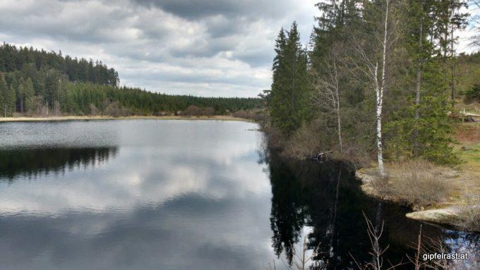 Der Rubner Teich, Vorbote des Tanner Moors