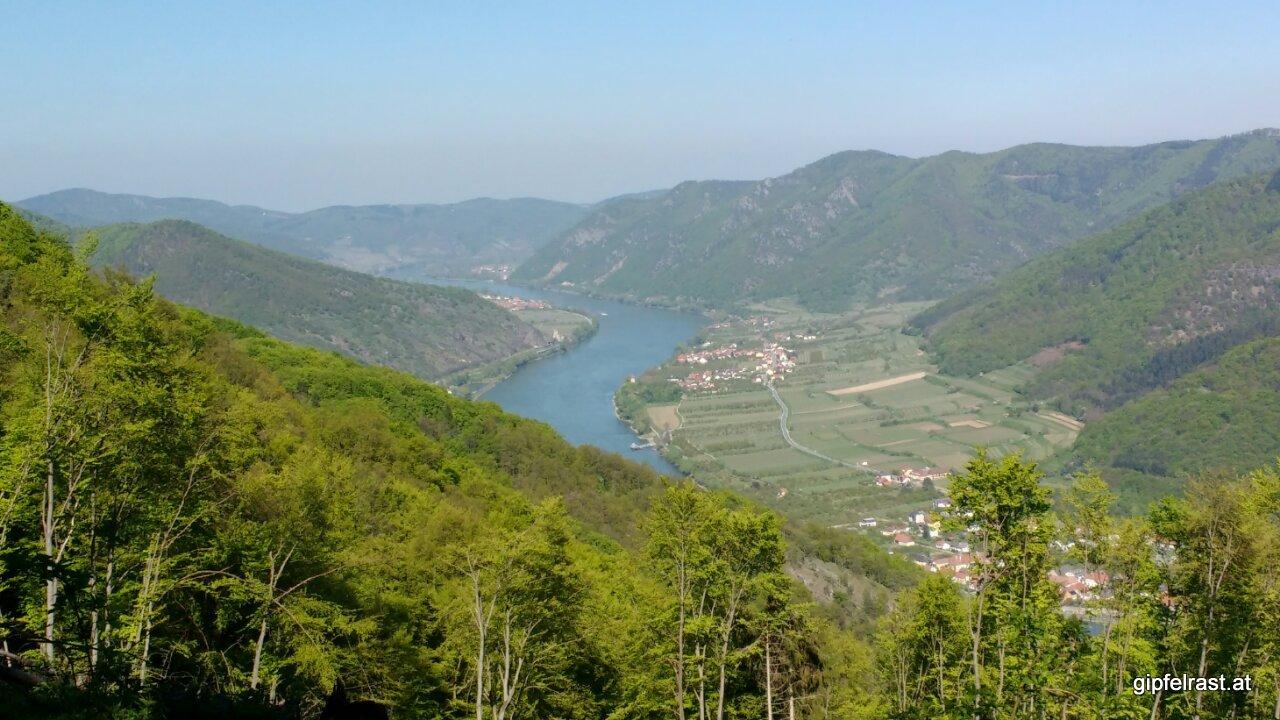 Der erste Blick auf die Donau