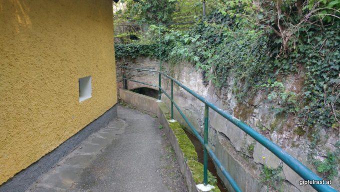 Verwinkelte Wege zur Donau