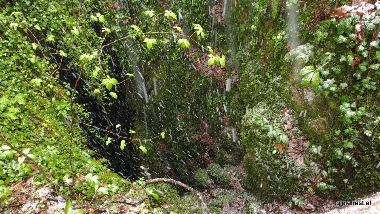 Der 'Originaleingang' zur Ötscher-Tropfsteinhöhle