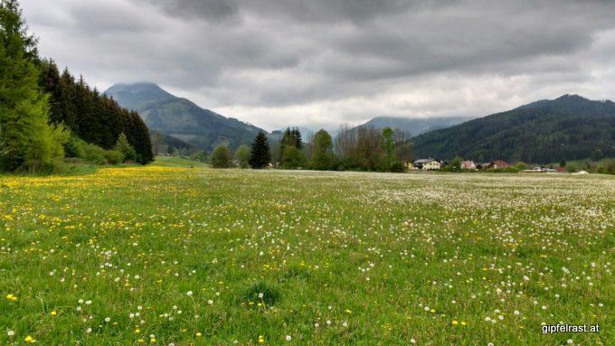Die Wiesen blühen, die Berge verstecken sich.