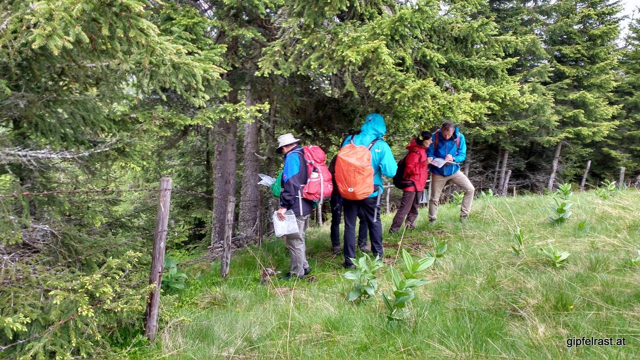 Wir suchen Schutz vor dem Regen sowie den Weg zurück zum Auto...