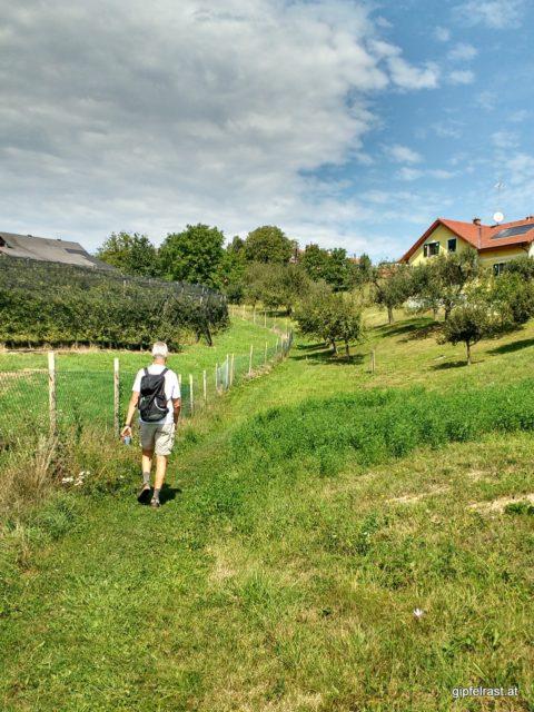 Der 'Alte Bauernsteig' führt uns nach Aunberg
