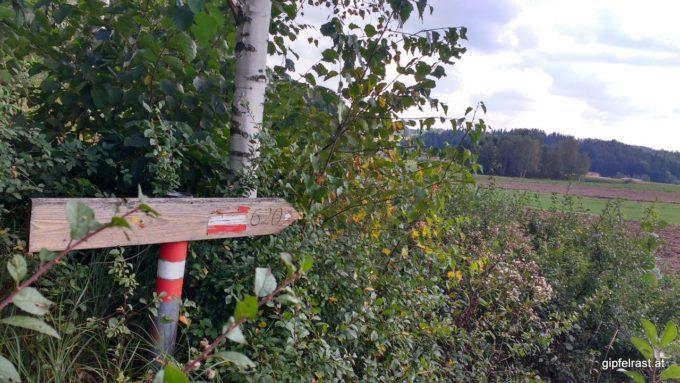 Die Markierung weist über ein frisch gepflügtes Feld