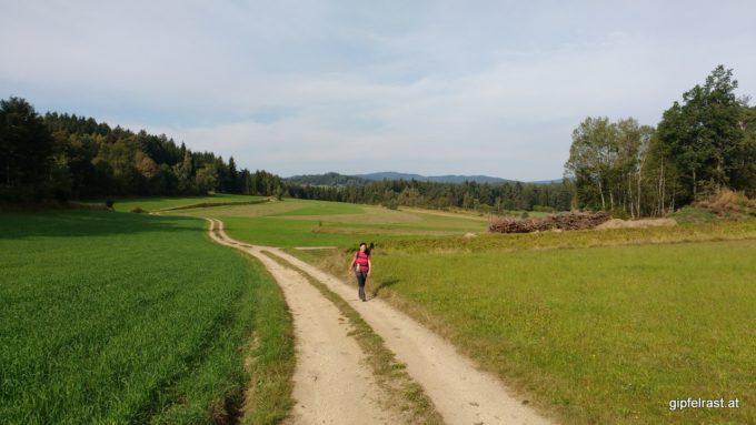 Am Hirtbühel, im Hintergrund der Nebelstein