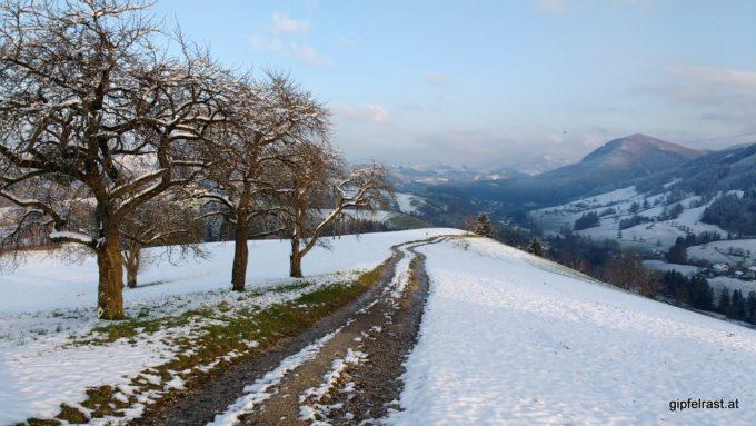 Abstieg nach Waidhofen/Ybbs