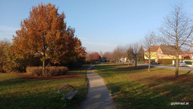 Im Park entlang der Kirschallee