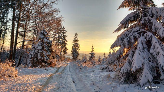 Die Landschaft ist in ein warmes Licht getaucht
